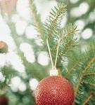 Christmas image 1